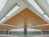 Wooden Ceiling and Acoustic Wall Panels
